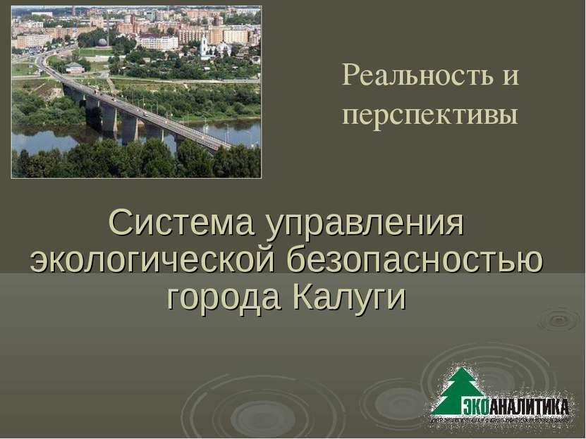Система управления экологической безопасностью города Калуги Реальность и пер...