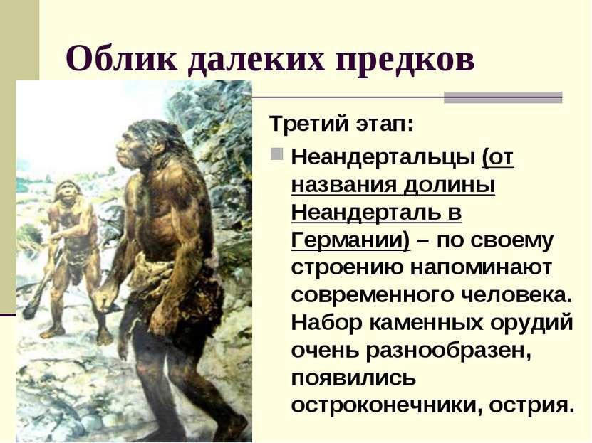 Облик далеких предков Третий этап: Неандертальцы (от названия долины Неандерт...