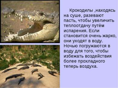 Крокодилы ,находясь на суше, разевают пасть, чтобы увеличить теплоотдачу путё...