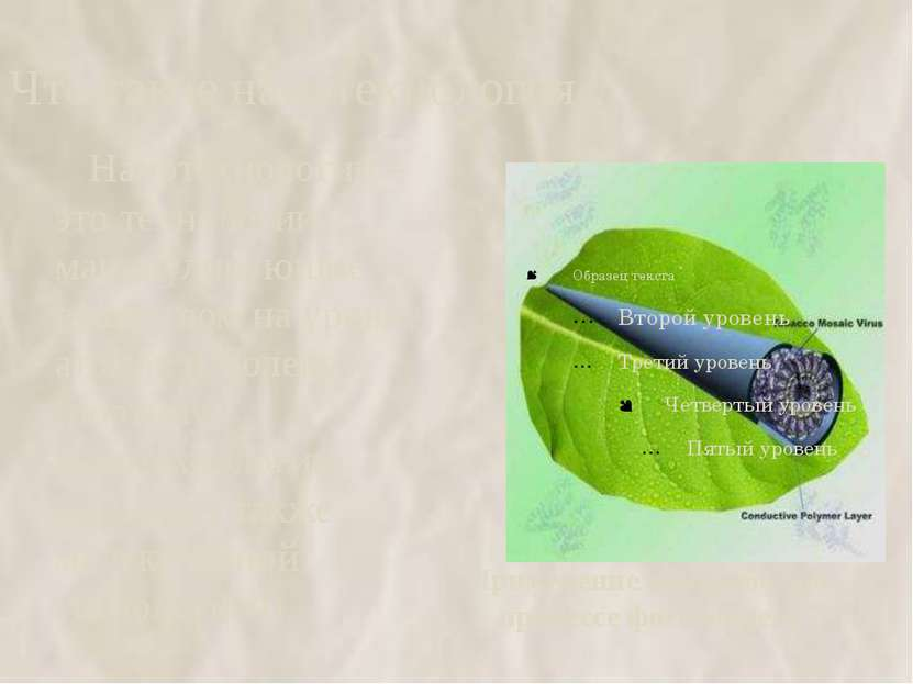 Что такое нанотехнология ? Применение наноробота в процессе фотосинтеза Нанот...