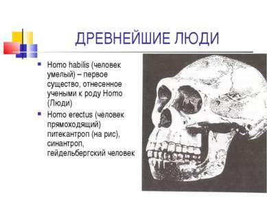 ДРЕВНЕЙШИЕ ЛЮДИ Homo habilis (человек умелый) – первое существо, отнесенное у...