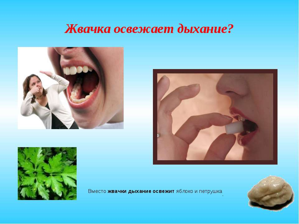 Жвачка освежает дыхание? Вместо жвачки дыхание освежит яблоко и петрушка.
