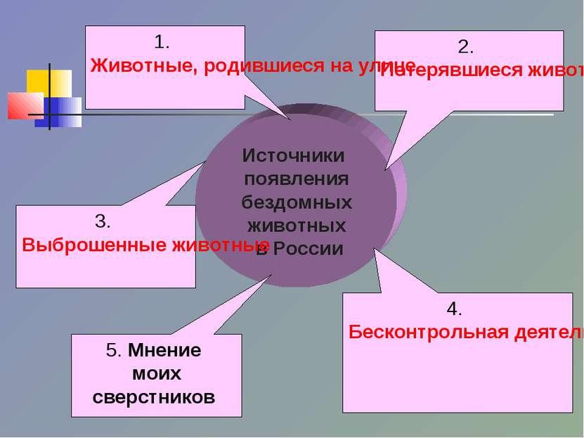 Источники появления бездомных животных в России 3. Выброшенные животные 4. Бе...