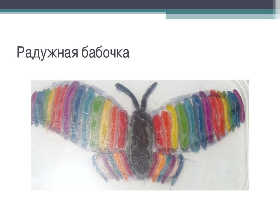 Радужная бабочка