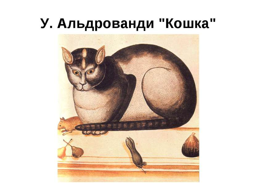 """У. Альдрованди """"Кошка"""""""