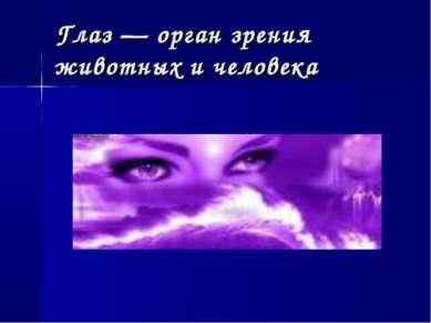 Глаз — орган зрения животных и человека
