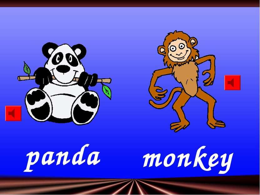 panda monkey