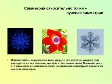 Симметрия относительно точки – лучевая симметрия Присмотритесь внимательно и ...