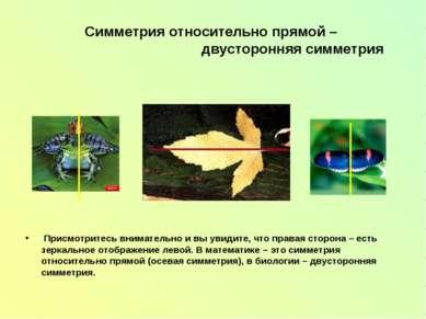 Симметрия относительно прямой – двусторонняя симметрия Присмотритесь внимател...