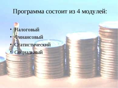 Программа состоит из 4 модулей: Налоговый Финансовый Статистический Социальный