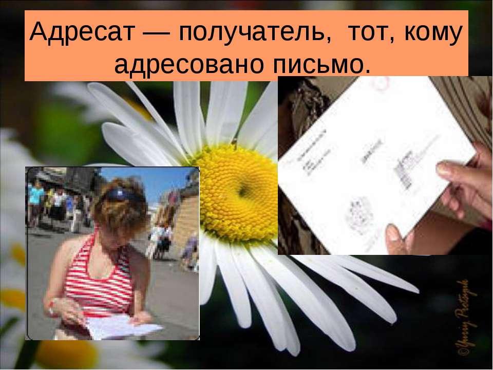 Адресат — получатель, тот, кому адресовано письмо.