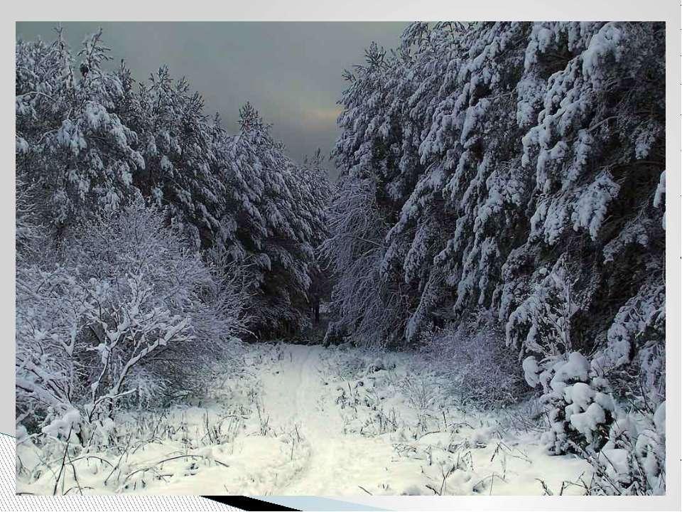 Снег летает и сверкает В золотом сиянье дня. Словно пухом устилает Все долины...