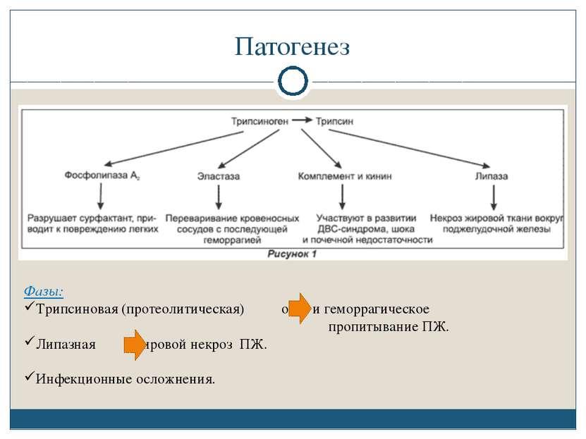 Патогенез Фазы: Трипсиновая (протеолитическая) отек и геморрагическое пропиты...