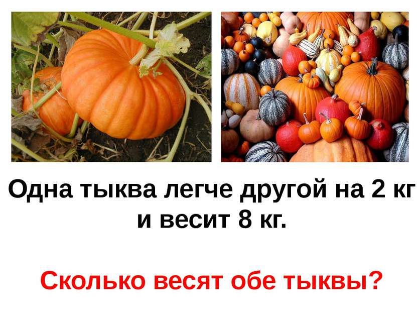 Одна тыква легче другой на 2 кг и весит 8 кг. Сколько весят обе тыквы?
