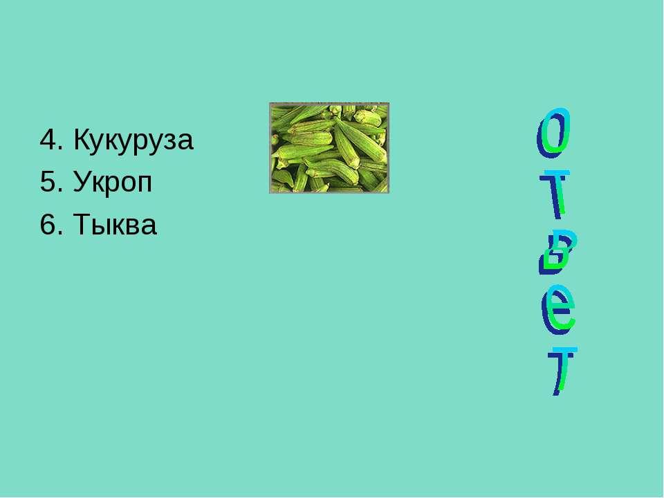 4. Кукуруза 5. Укроп 6. Тыква