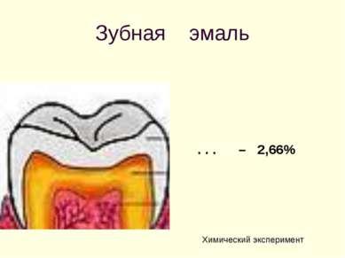 Зубная эмаль . . . – 2,66% Химический эксперимент