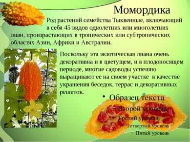 Момордика Род растений семейства Тыквенные, включающий в себя 45 видов одноле...