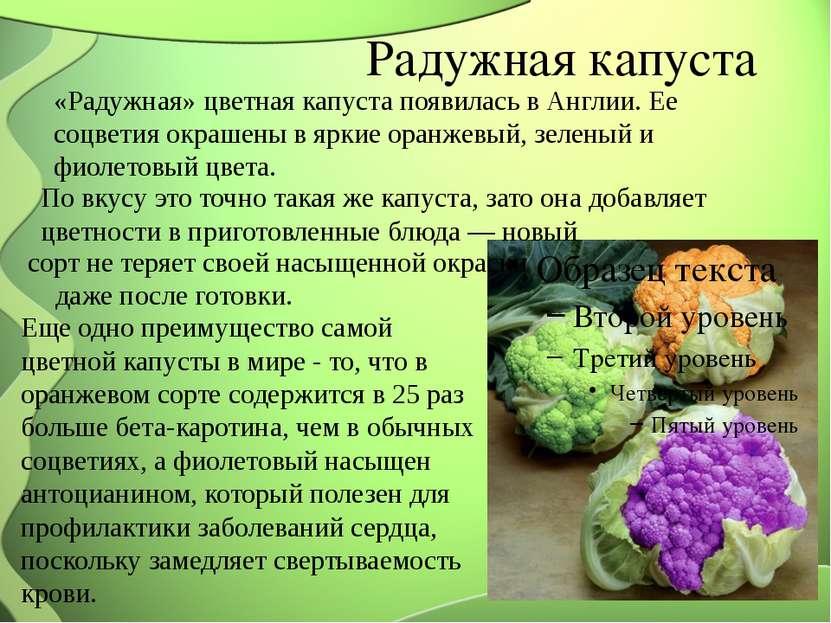 Радужная капуста «Радужная» цветная капуста появилась в Англии. Ее соцветия о...