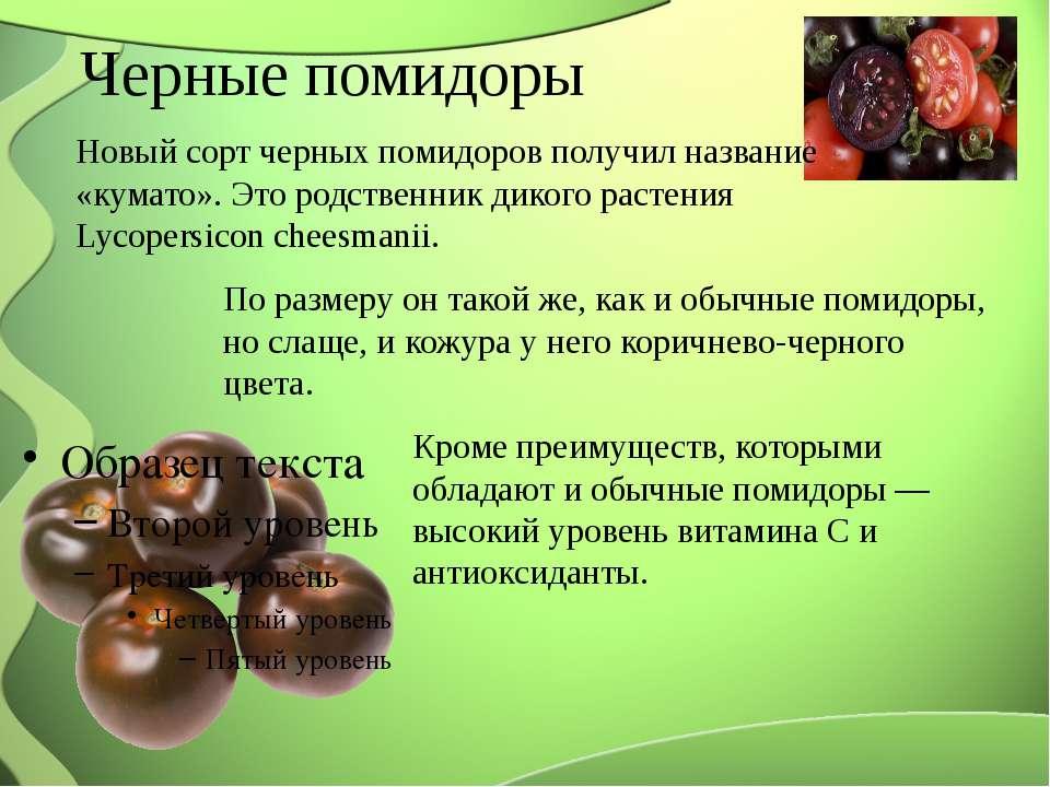 Черные помидоры Новый сорт черных помидоров получил название «кумато». Это ро...