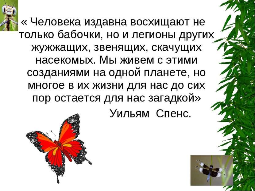 « Человека издавна восхищают не только бабочки, но и легионы других жужжащих,...
