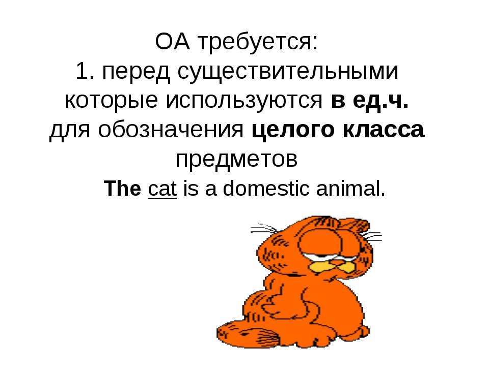 OA требуется: 1. перед существительными которые используются в ед.ч. для обоз...