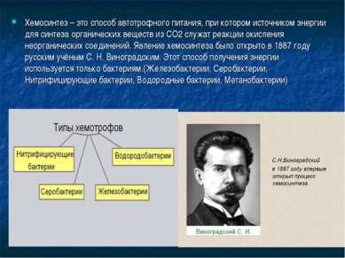 Хемосинтез – это способ автотрофного питания, при котором источником энергии ...
