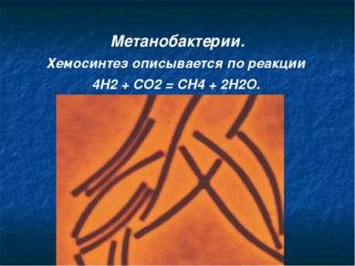 Метанобактерии. Хемосинтез описывается по реакции 4H2 + CO2 = CH4 + 2H2O.