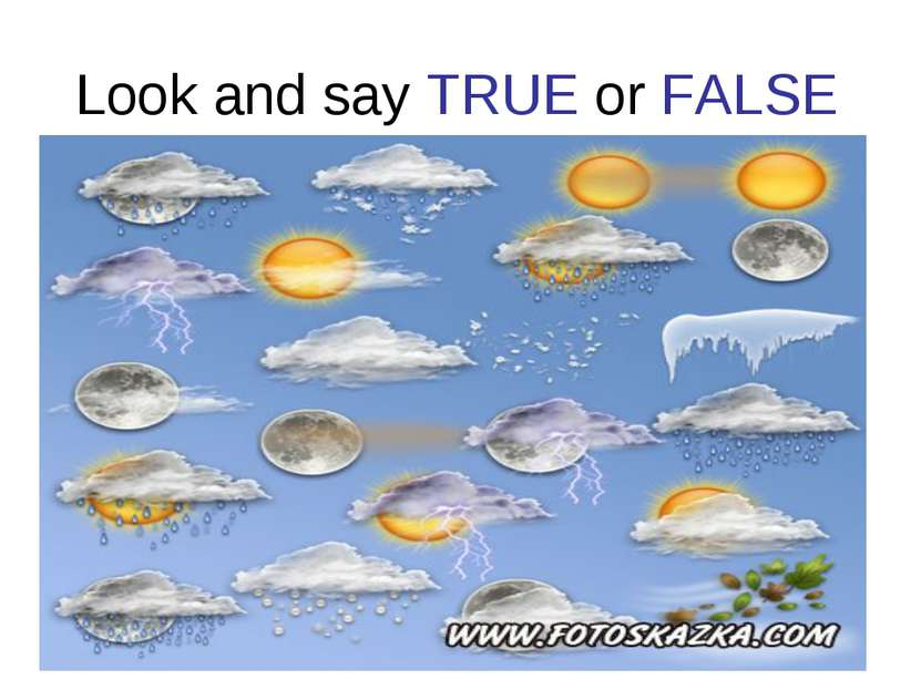 Look and say TRUE or FALSE