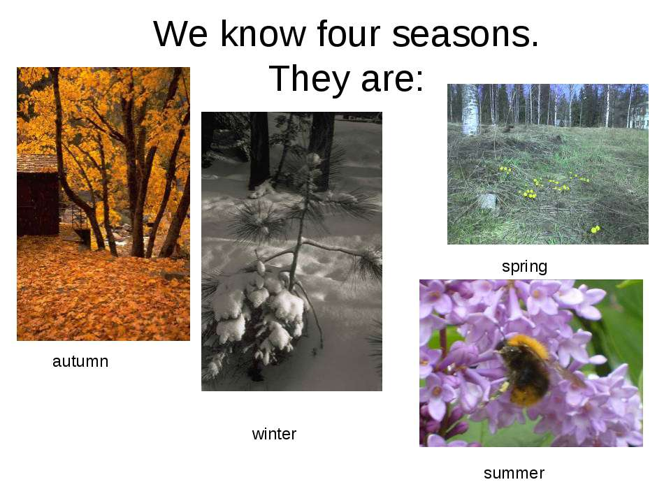 We know four seasons. They are: autumn spring summer winter