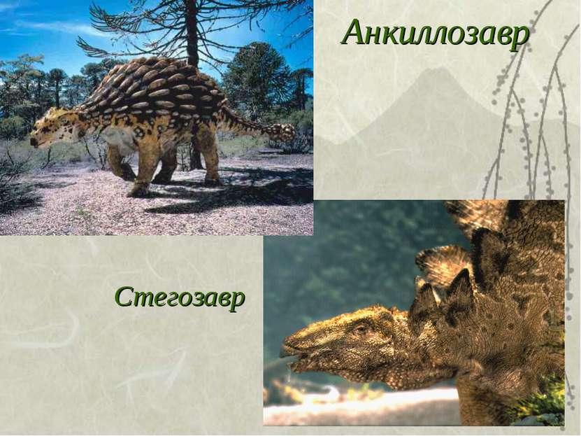 Анкиллозавр Стегозавр