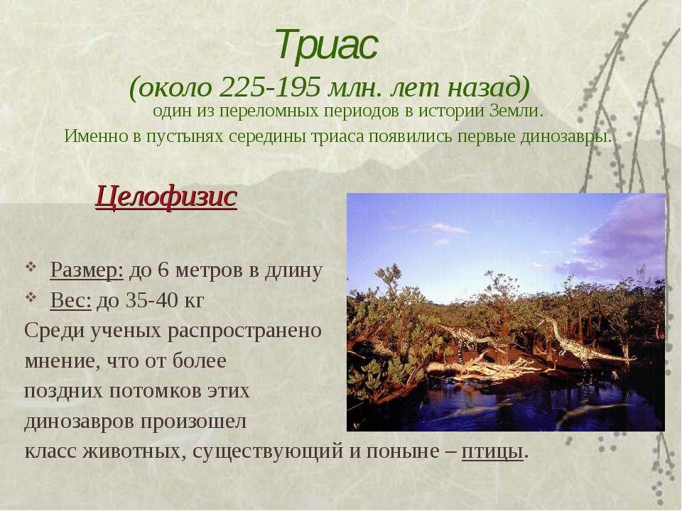 Триас (около 225-195 млн. лет назад) один из переломных периодов в истории Зе...