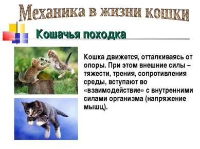 Кошачья походка Кошка движется, отталкиваясь от опоры. При этом внешние силы ...