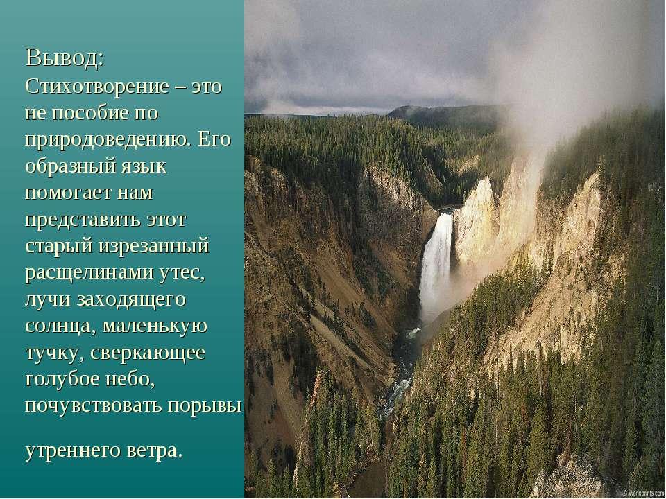 Вывод: Стихотворение – это не пособие по природоведению. Его образный язык по...