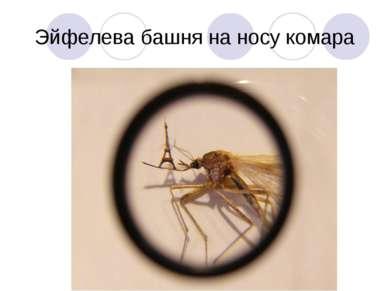 Эйфелева башня на носу комара