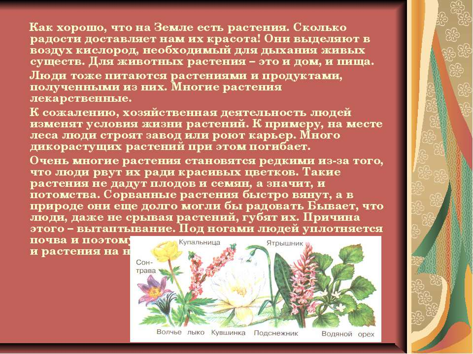 Как хорошо, что на Земле есть растения. Сколько радости доставляет нам их кра...