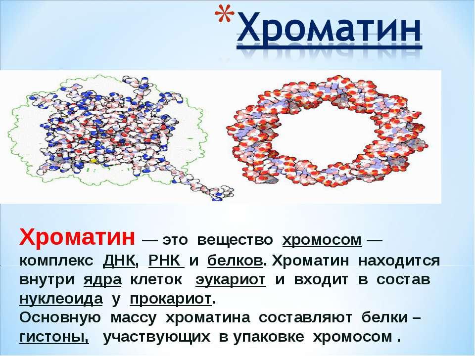Хроматин— это вещество хромосом— комплекс ДНК, РНК и белков. Хроматин наход...