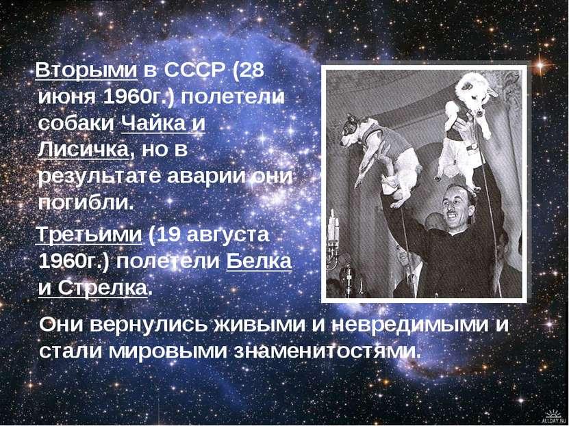 Вторыми в СССР (28 июня 1960г.) полетели собаки Чайка и Лисичка, но в результ...