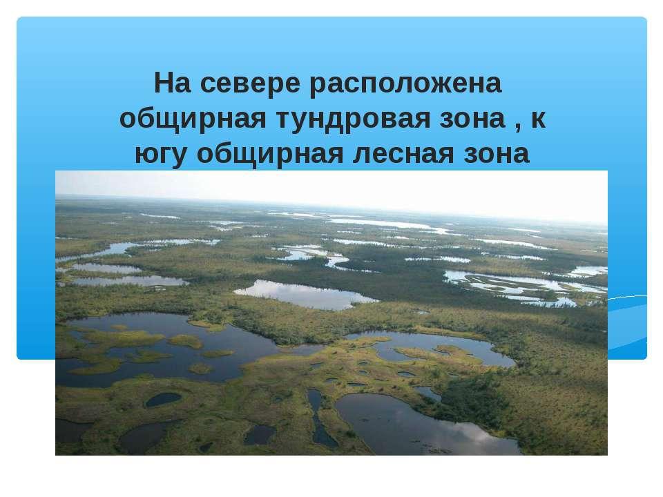 На севере расположена общирная тундровая зона , к югу общирная лесная зона