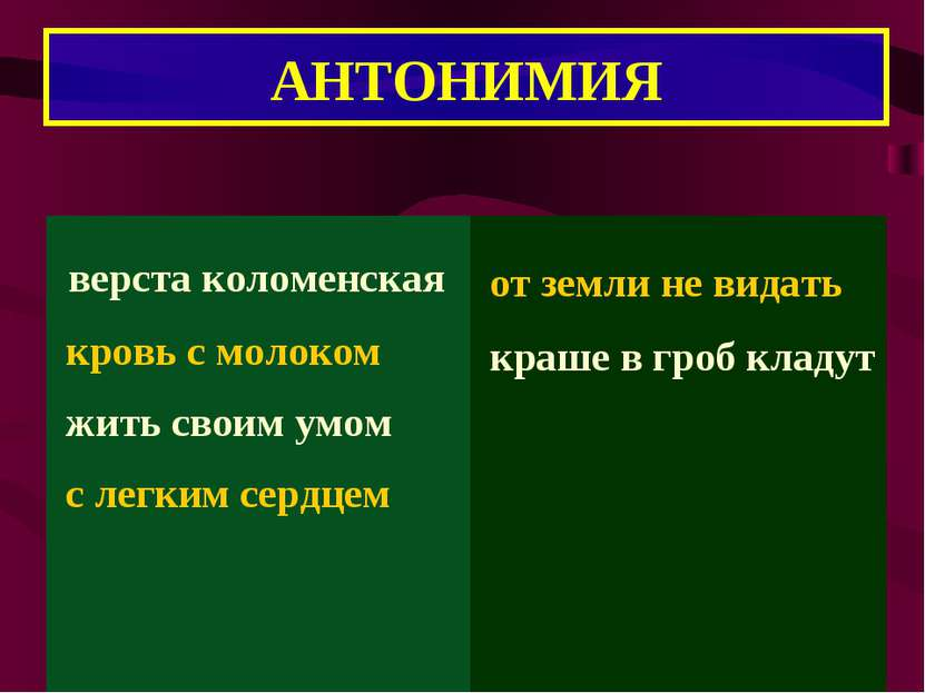 АНТОНИМИЯ
