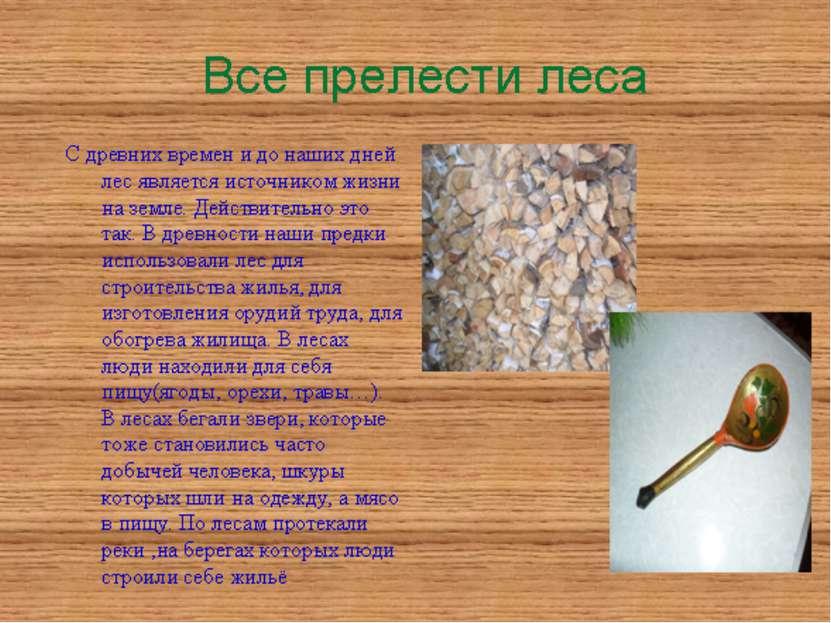 С древних времен и до наших дней лес является источником жизни на земле. Дейс...
