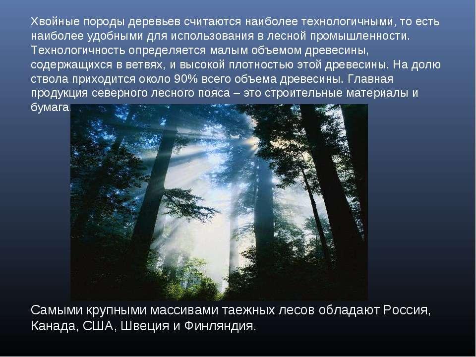 Хвойные породы деревьев считаются наиболее технологичными, то есть наиболее у...