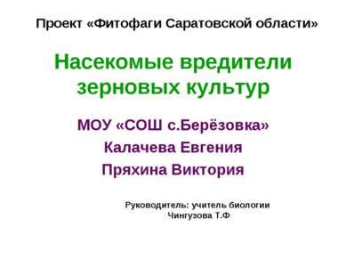 Насекомые вредители зерновых культур МОУ «СОШ с.Берёзовка» Калачева Евгения П...
