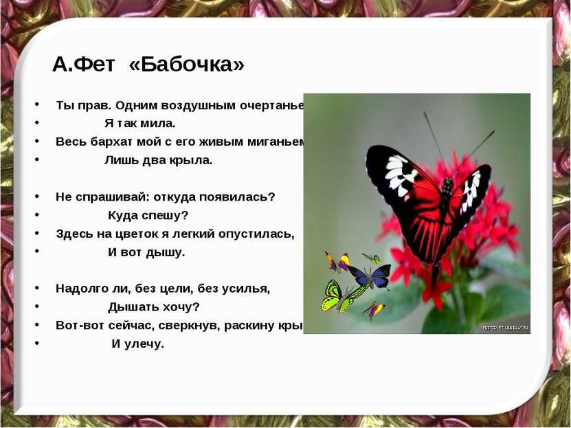 А.Фет «Бабочка» Ты прав. Одним воздушным очертаньем Я так мила. Весь бархат м...