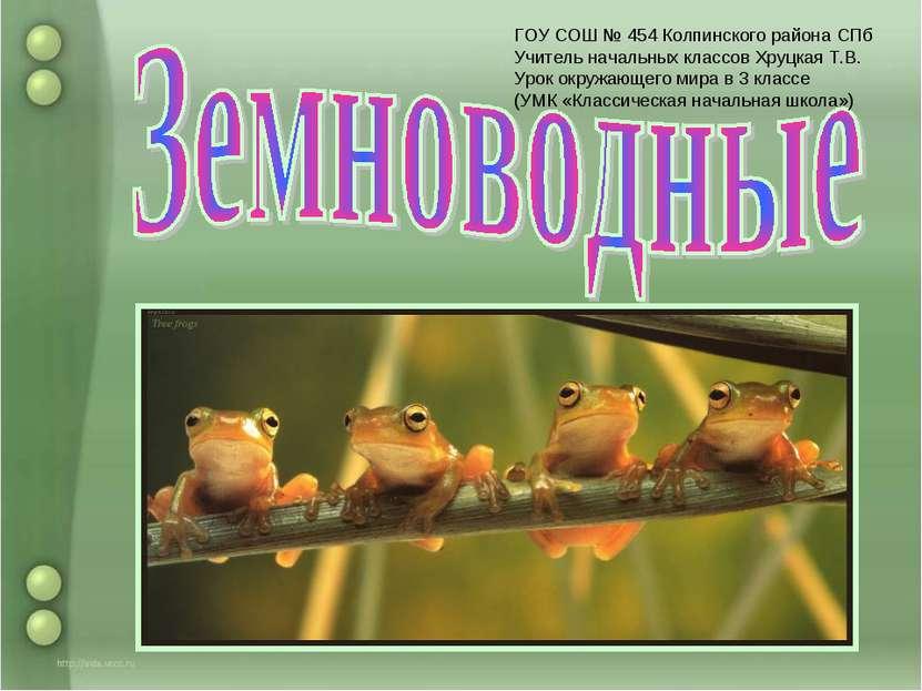 ГОУ СОШ № 454 Колпинского района СПб Учитель начальных классов Хруцкая Т.В. У...
