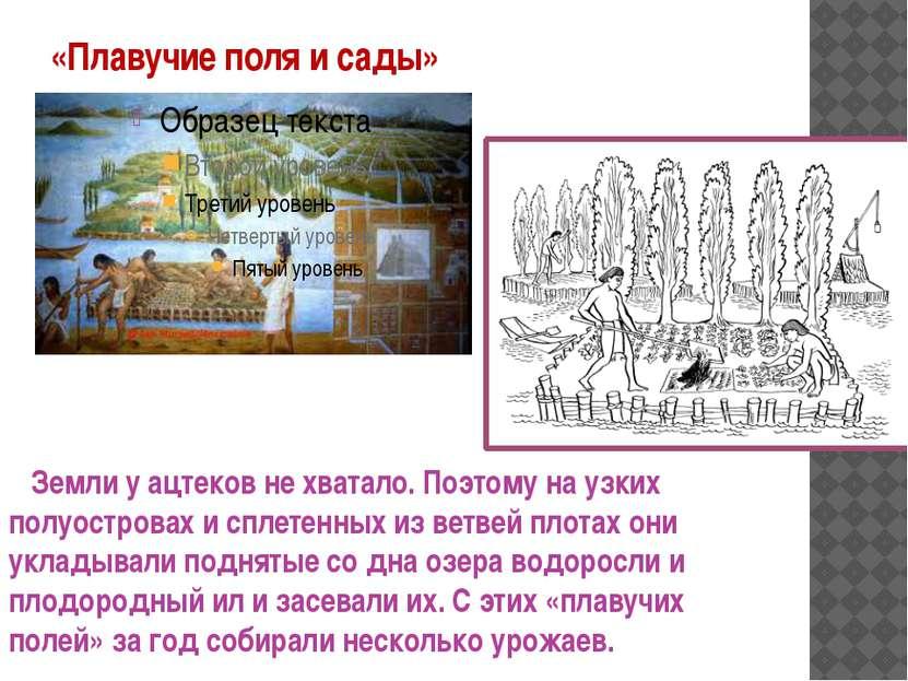 «Плавучие поля и сады» Земли у ацтеков не хватало. Поэтому на узких полуостро...