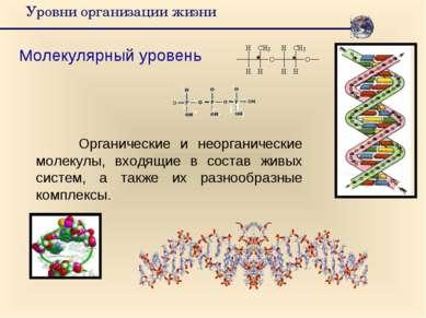 Уровни организации жизни Молекулярный уровень Органические и неорганические м...