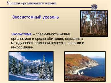 Уровни организации жизни Экосистемный уровень Экосистема – совокупность живых...