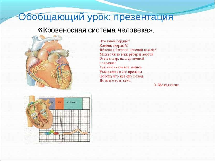 Обобщающий урок: презентация «Кровеносная система человека». Что такое сердце...