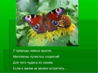 У природы живые краски, Миллионы лучистых соцветий Для чего чудеса из сказки,...