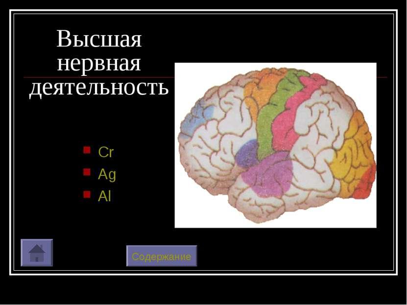 Высшая нервная деятельность Cr Ag Al Содержание